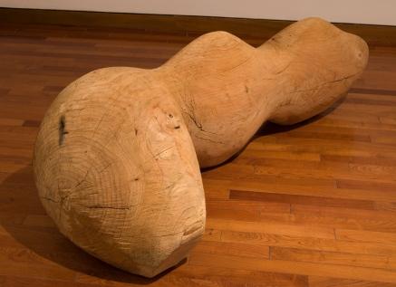 Cuis (grande)/Cuis(big) 2010