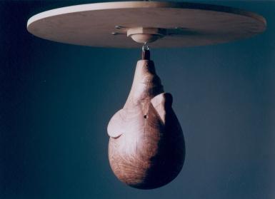 Punching-ball 1998
